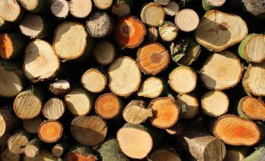 Natural Resource Report